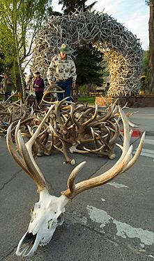 Elk antler archTown Square Jackson Wyoming