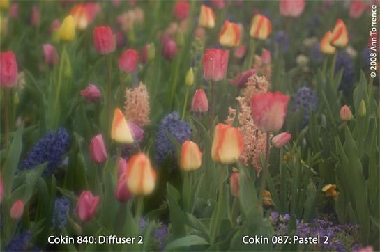 comparison compare cokin filter 087 840 pastel diffuser diffusion