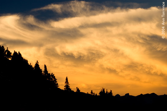 colorado sunset silhouette forest dramatic sky skies