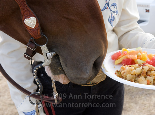 horse and cowgirl breakfast