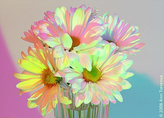 remix-daisies.jpg