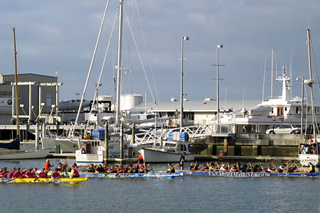 dragonboat races/></p> <p class=