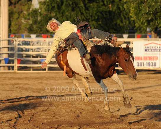 Riverton rodeo saddle bronc