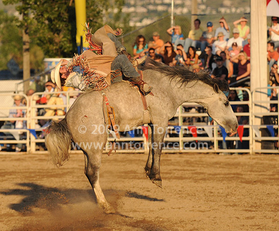 saddle bronc rodeo