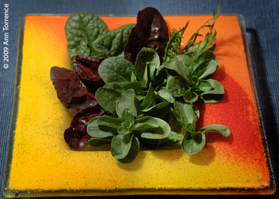 composed salad greens: spinach, Bull's Blood beet greens, staghorn, mache