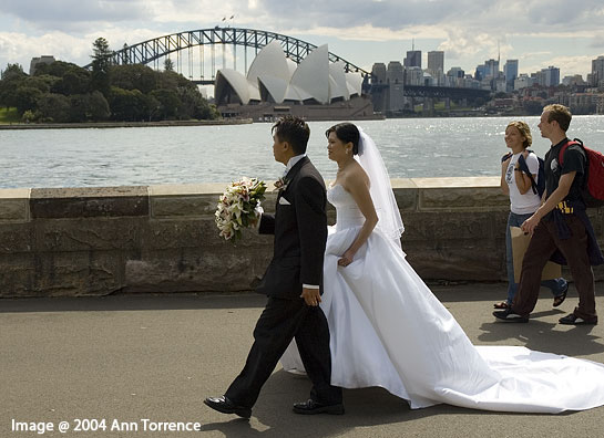 bride and groom in Sydney park in front of Harbor Bridge and opera