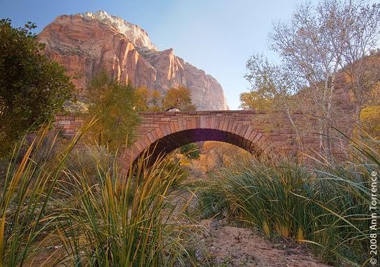 Bridge in Zion National Park fall color landscape