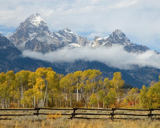 Tetons and cottonwoods at Menor's Ferry