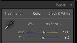 "Basic develop panel in LR, showing white balance ""as shot"