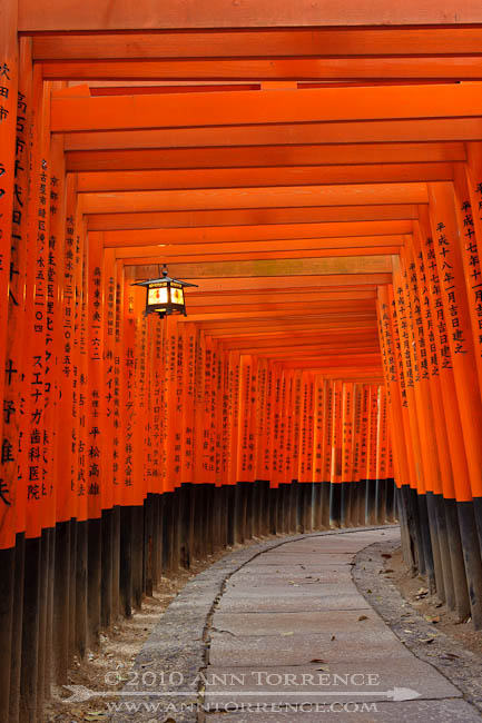 Fushimi Inari after dark