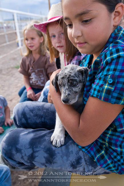 """Can I hold the puppy?"" Loa, Utah"