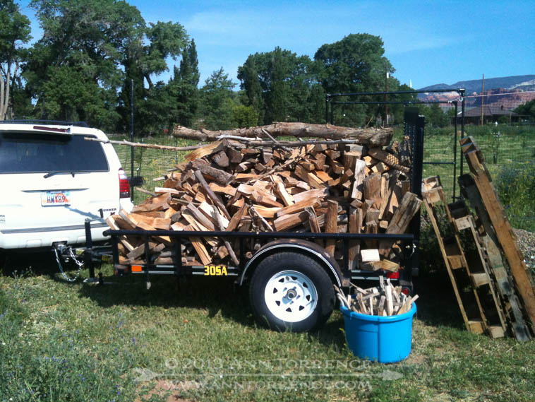 In our unending campaign to de-Clampett-ize the farmstead, I moved the wood again, photo-documented to prove I really do get stuff done while R toils at the lab. The wood sat in the trailer until he got back and helped me unload; we had to agree on its second-to-final destination; the last being the woodstove I am ordering this week.
