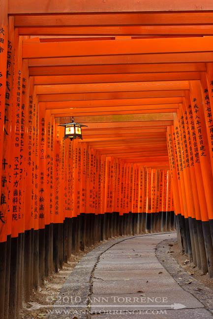 Fushimi Inari after dark