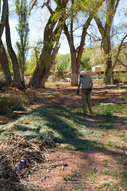 Hugelkultur bed, a permaculture strategy for low-water usage, built in Wayne County, Utah